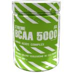 FA Nutrition BCAA 5000 Aminoskābes